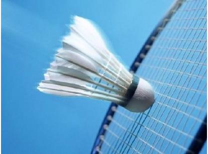 羽毛球用品有哪些,羽毛球用品品牌有哪些