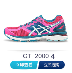 gt2000-4