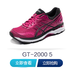 gt2000-5