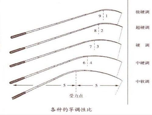 什么是鱼竿的调性?软调、中调、硬钓、超硬钓、极硬钓杆